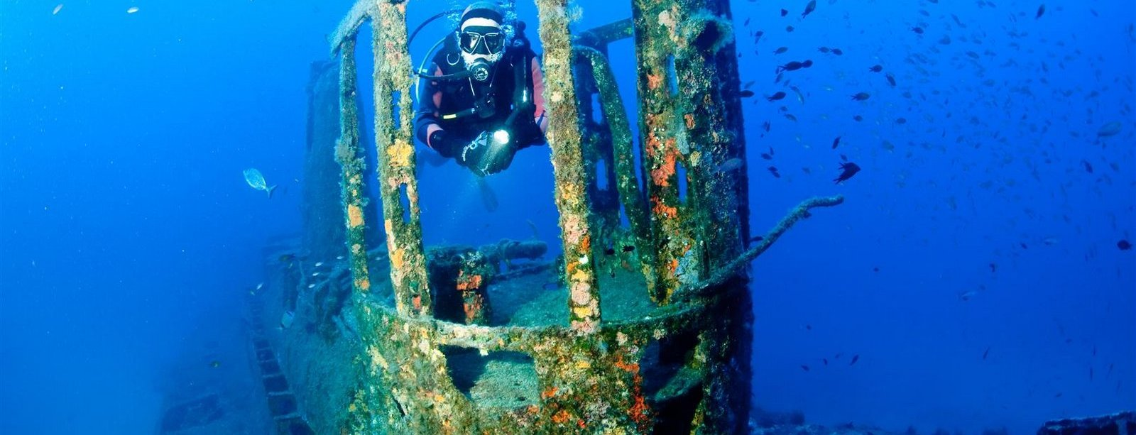 Fascinating wrecks